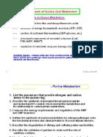 Genetics, Lecture 1 &2 Purines & Pyrimidines (Slides)