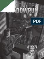 26100 - Anatomy of a Shadowrun
