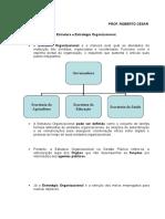 Estrutura e Estrategia Organizacional