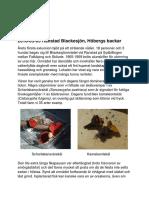 Ranstad Blackesjön 2018-05-05