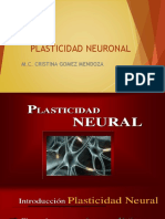 Neuro Plasticidad