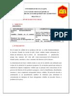 BASES-VOLATILES.docx