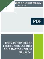 Catastro-normas Tecnicas de Gestioreguladoras Del Catastro Urbano Municipal