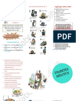 Leaflet Diabetes Militus