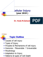 Pathology, Lecture 2, Cell Injury (slides)