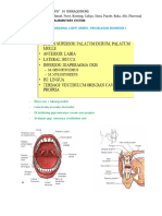 Anatomy Alimentary System Full Version(1)