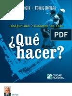 Inseguridad Ciudadana en Lima