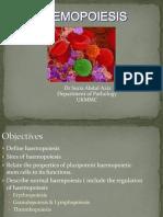 CL1 Haemopoiesis