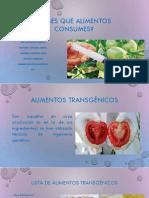 Exxposicion alimentos transgenicos