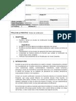 Formato de Informe Electronica Automotriz JRE