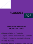 flacidezmuscular-130916192127-phpapp02