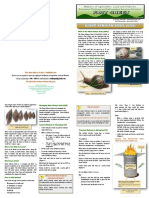 Giant African Snail (GAS) Factsheet
