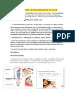 Salud Materna y Atencion Primaria en Salud