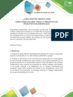 Anexo - Etapa 7 - Evaluación Final Por POA (1)
