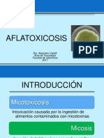 Fibrosis Hepática Aflatoxicosis