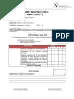 RÚBRICA (T2) 2018 -1 PRACTICAS PRE