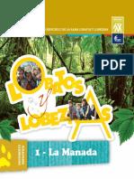 Documentos de Programa - MANADA 1.pdf