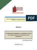 QUIM, Juan Santiago. Conceptos Fundamentales de Los Derechos de Los Pueblos Indígenas y Diversidad Cultural
