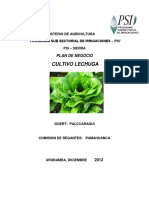 Plan Negocios GGERT Palccaraqui