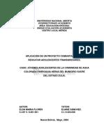 Aplicacion de un proyecto comunitario.pdf