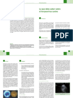 81503088-Herpesvirus-Canino.pdf