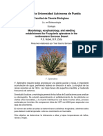 Resumen Etnoclimatología