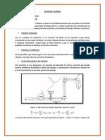 FLUJO DE FLUIDOS LOU I.docx