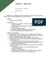 0_proiect_didactic_kinetoterapie.doc