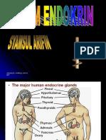 Endokrin revisi