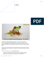 26- La storia della piccola rana