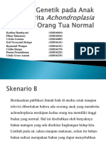 B3 Skenario B