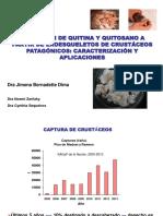 4. Obtención de Quitina y Quitosano a Partir de Exoesqueleto de Crustáceos Patagónicos Caracterización y Aplicaciones J. Dima
