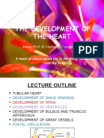 The Development of the Heart 2015