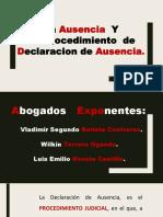 Exposicion de Procedimientos Especiales
