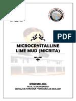 Microcrystalline Lime Mud (Micrita)