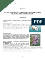 Clase Nº 9 Fecundación, Desarrollo Embrionario, Anexos Embri