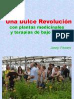 pdf plantas medicinales remedios naturales josep Pamies Dulce Revolucion España.pdf