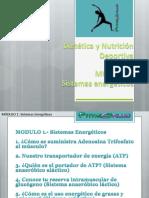 1. Sistemas energéticos.pdf