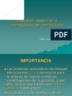 Metabolismo de aac.ppt