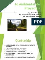 ImpactoAmbientalProyectos.pdf