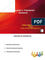 Ppt Valoracion y Tributacion Aduanera