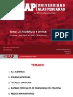 PDF La Audiencia y Otros