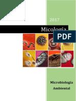 TP 8 Micología