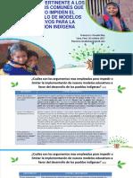 Abordaje Pertinente Argumentos Comunes Modelos Educativos Poblacion Indigena Francisco Rosado