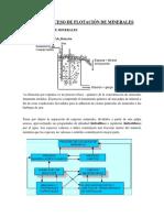 Proceso de Flotación de Minerales