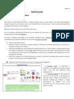 fisiopatologia n.1.docx