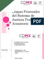 Etapas_Procesales