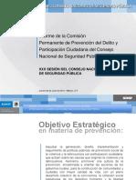 Informe de La Comision Permanente de Prevencion Del Delito y Participacion Ciudadana