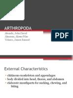 Arthropod A