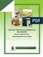 GUIA DE PRACTICAS PARA GERENCIA.pdf